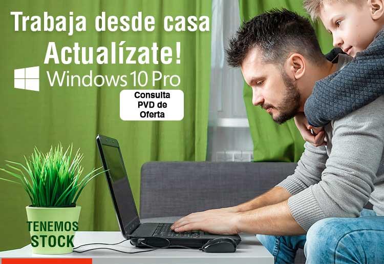 oferton windows 10 pro